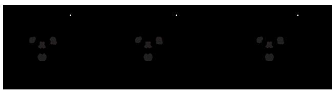 Metallofullerene