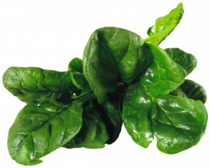 Spinach health benefit