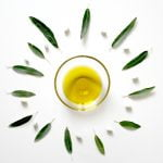 life extension, C60 olive oil