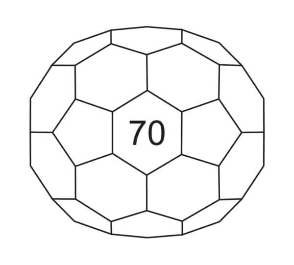 C70 - SES Research Inc.